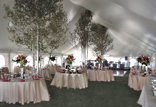Bo Atkinson enlivened the tent with trees and lighting for the big band