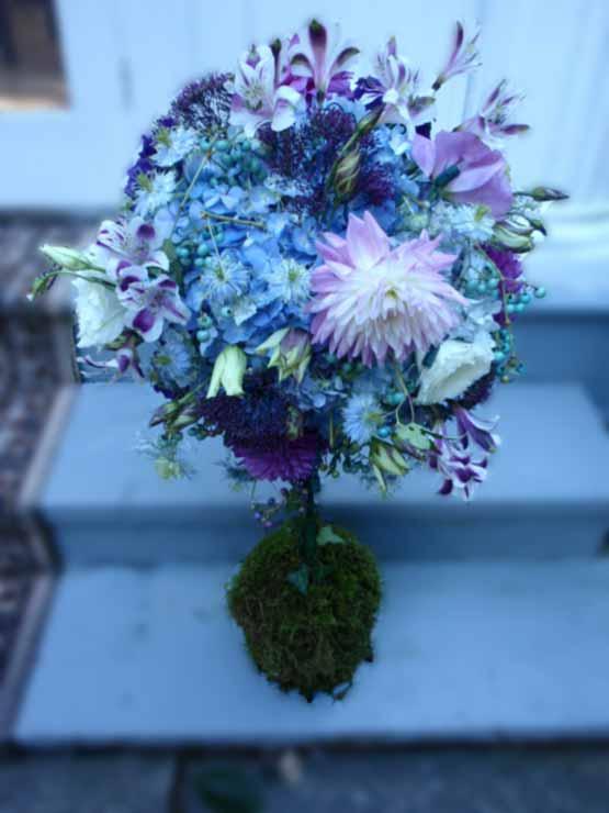 Sky Blue Color Flowers Images