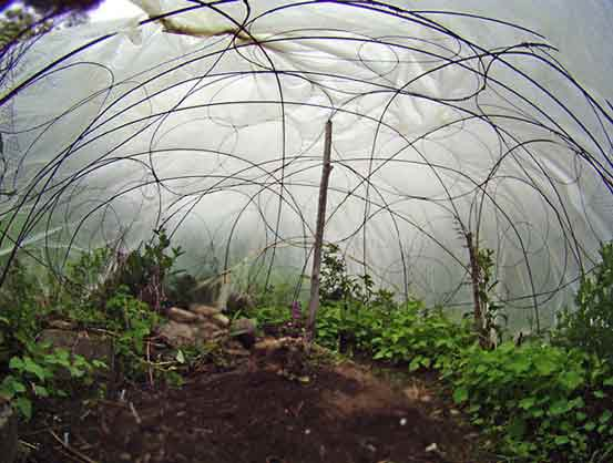 easy eyelid greenhouse wigwam - Dome Greenhouse Designs