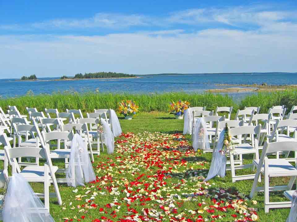 Alda 39s 2010 Wedding Photos Alda 39s Wedding Flowers 2005 This Page